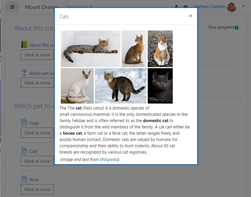 Una actividad de la página de Moodle se abre en una ventana emergente, que se muestra en la parte superior de la página del curso. Contiene fotografías de diferentes razas de gatos y un texto sobre gatos. Tiene un botón X en la parte superior derecha para cerrar la ventana emergente.